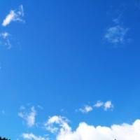 台風一過のさわやかな青空です♪