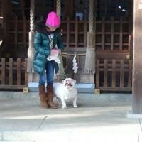 モンちゃんと足助神社に行ってきました