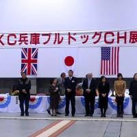 JKC兵庫ブルドッグクラブ展