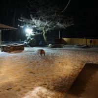 雪が積もったよ(*´◡`*)